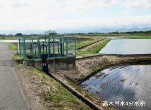 南側(左)から流入した高木用水は この枡(C)で4本の小水路に分れる