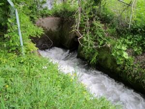 高木用水流出口